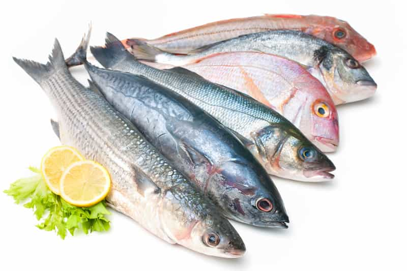 Fish have good source of lean protein